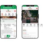 Vyhľadávanie medzi jedlami a interaktívny dizajn pri mobilnom zobrazení webu